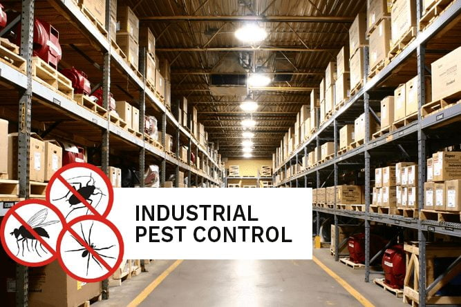 Pest control in the industrial areas of Perth